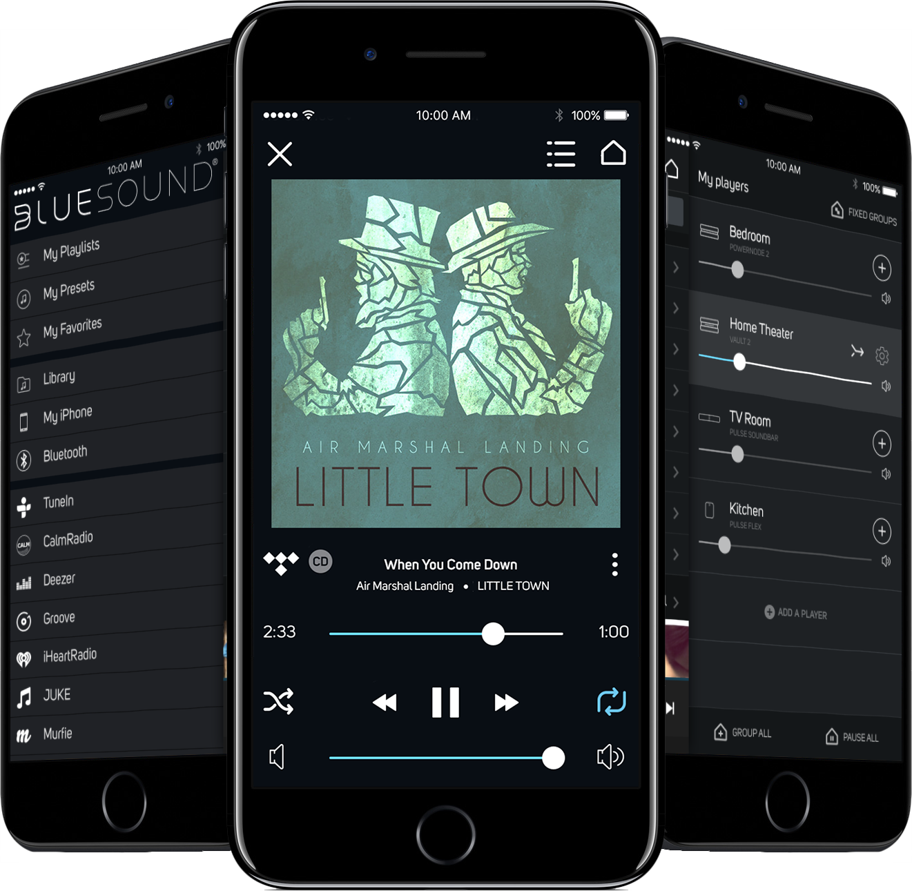 iOS App for whole house music