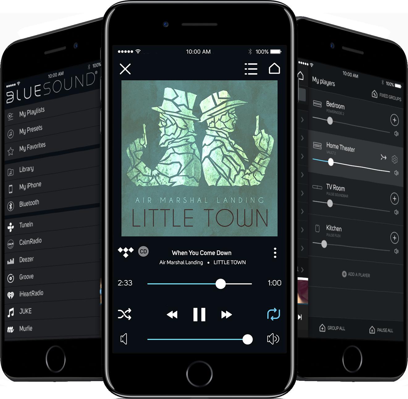 iOS App for whole house music