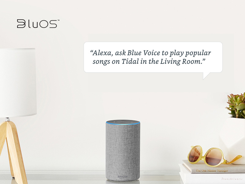 Alexa Voice Control Skills Coming to BluOS