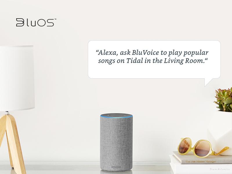 Alexa Voice Control Skills Coming to BluOS